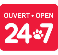 24Hrs Emergency Services
